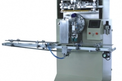 SEAS-110 Full-auto Silk Printing Machine